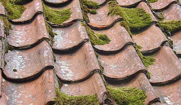 Kaputtes Dach das saniert werden muss.
